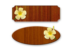 Wood decorated with frangipani flowers. On white Royalty Free Stock Photography