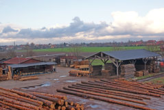 Wood Deposit Royalty Free Stock Images