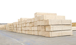 Wood deposit. Timber wood piles deposit for export Stock Photography