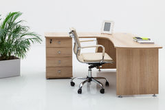 Wood desk and palm Royalty Free Stock Photos