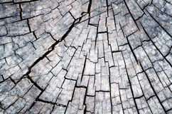 Wood detail. The old timber is located outdoor. S Royalty Free Stock Image