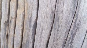 Wood details texture wallpapers and backgrounds Stock Photography