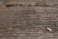 Wood with died leaf Texture Background Stock Photography