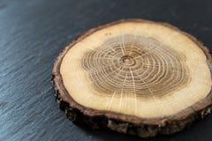Wood disc on slate stock image