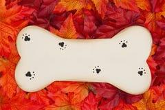 Wood dog bone for the fall season royalty free stock photo