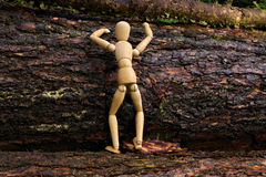 Wood doll climbing a tree Royalty Free Stock Photography