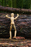 Wood doll climbing a tree Stock Photos