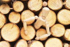 Wood doll evolution Royalty Free Stock Photo