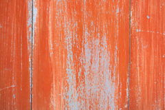 Wood door coating. Royalty Free Stock Photography