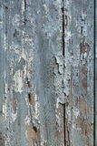 Wood door gray texture and background Royalty Free Stock Image