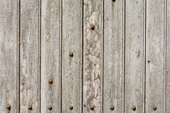 Wood door with panels and rivets Royalty Free Stock Photos