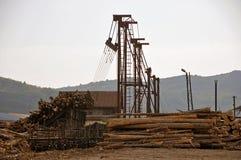 Wood drev som lastar av område Royaltyfria Bilder