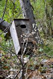Wood Duck House Royaltyfri Bild