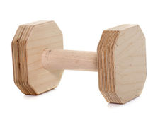 Wood dumbbell for dog Stock Image