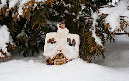 At the wood on an edge there lives the winter in an izba (house)... Stock Photo