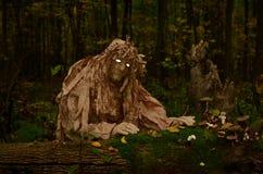 Wood elakt troll med vita ögon Royaltyfri Bild