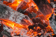 Wood embers detail Stock Images