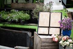 Wood etikett i trädgård Fotografering för Bildbyråer