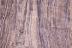 Wood exotiskt, fanérträdskrivbord Royaltyfria Foton