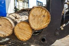 Wood fabriks- rörande trä Arkivbilder