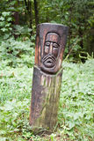 Wood Face Royalty Free Stock Images