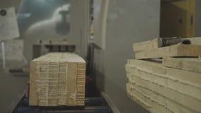 Wood Factory general plan: the production of laminated veneer lumber. stock video footage