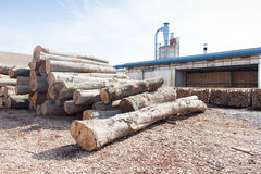 Wood factory on sunny day. Detail from wood factory outdoor royalty free stock images