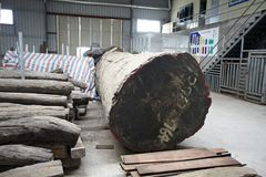 Wood in factory warehouse 2 Stock Photo