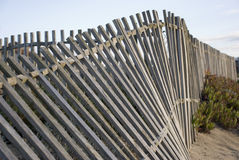 Wood Fence. Rustic wood fence to protect sand-hill Royalty Free Stock Image