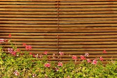Wood Fence in the Backyard Royalty Free Stock Image