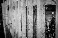 Wood fence Royalty Free Stock Photography