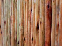 Wood fence. In country of Thailand royalty free stock photos