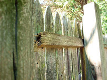 Wood fence - damaged Royalty Free Stock Photo
