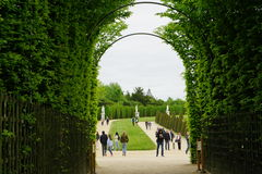 A wood fence in the gardens of Versailles. Paris, France Royalty Free Stock Photography