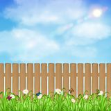 Wood fence with grass flower and sky background. A wood fence with grass flower and sky background Royalty Free Stock Photography