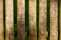 Wood fence on green background texture. Warm sun light - landscape photo royalty free stock images