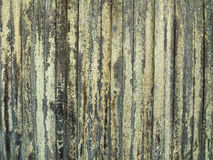 Wood Fence With Lichen Royalty Free Stock Photography