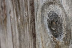 Wood Fence Plank - Angled with Depth Royalty Free Stock Photos