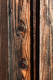 Wood Fence Plank with Knots Stock Images