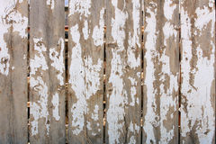 Wood fence Shiped white paint texture. Old Wood Fence with massive chipped peeling white paint texture background Stock Images