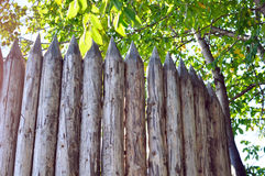 Wood fence top Stock Images