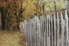 Old village wooden fence in autumn Royalty Free Stock Photography