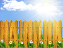 Wood fence and white flowers. Stock Image