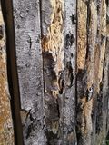 Wood fence. Wooden, fence, wood, bark, backgraund Stock Photos