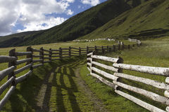 Wood fences in the Alps. Old wooden fence in Italy Royalty Free Stock Photography