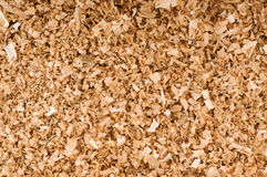 Wood filings Stock Photography