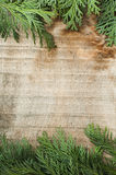 Wood and fir branches background Royalty Free Stock Photo