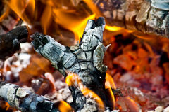Wood fire Stock Images