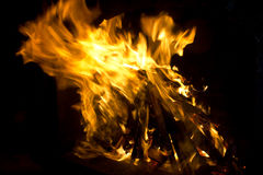 Wood fire Stock Image