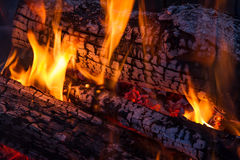 Wood fire. Flames on charred logs in a campfire or fireplace Royalty Free Stock Images